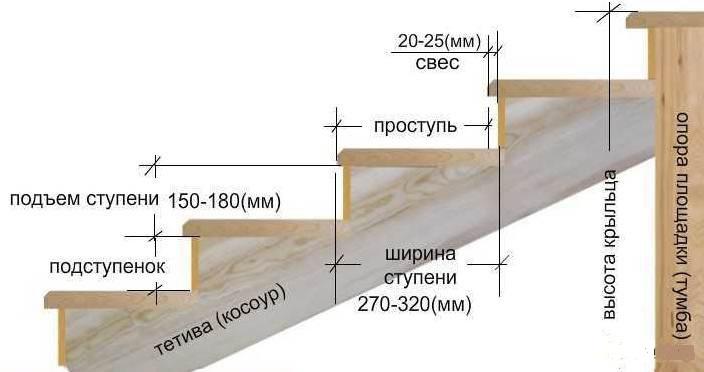 Оптимальной считается высота подступёнка, равная 150, а ширина проступи — 300 мм
