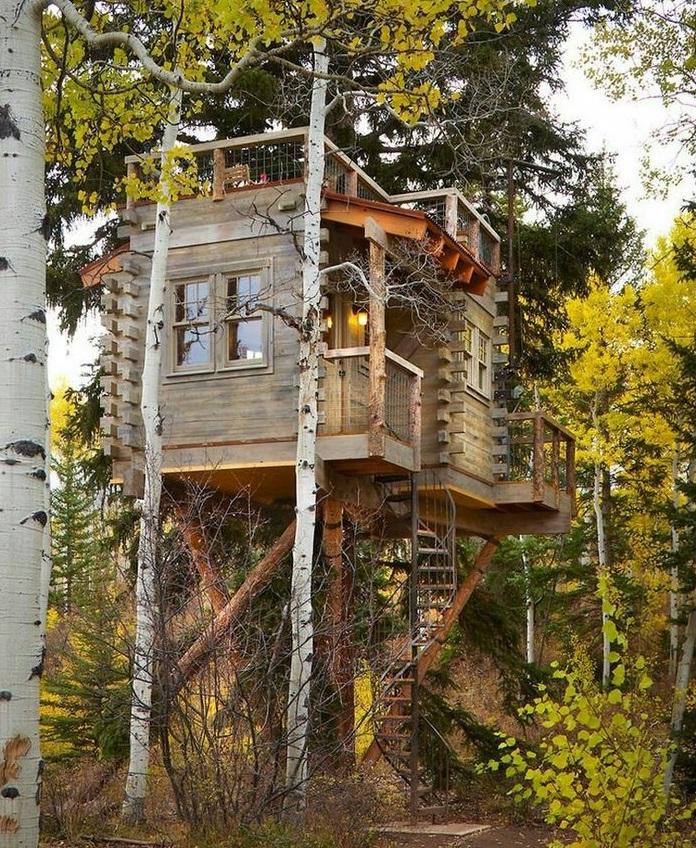 Построить дом на дереве