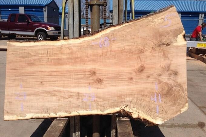 клен спил дерева столешница фото пример