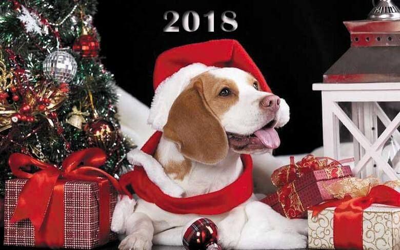 2018 год будет годом Желтой Земляной Собаки. Это мудрая, справедливая, рассудительная Хозяйка года. Это год больших удач. Все события будут складываться самым наилучшим образом. Собака умеет терпеливо ждать и награду за свое терпение получат все в полном объеме.
