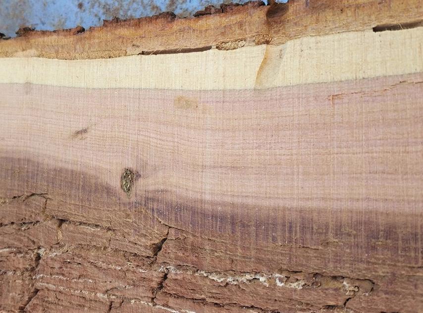 Для этого он распилил и обработал профильную древесину, а также массивные древесные стволы